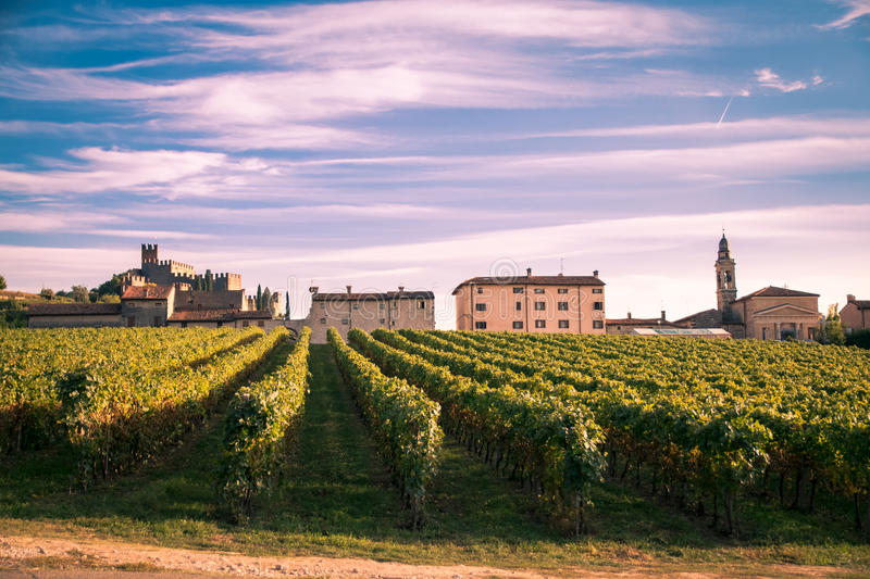 Download View Of Soave Italy And Its Famous Medieval Castle Stock Photo - Image: 83724094