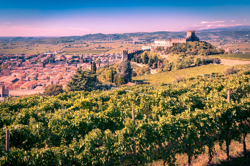 Download View Of Soave Italy And Its Famous Medieval Castle Stock Image - Image: 83724115