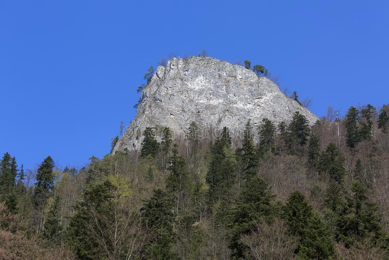 View on Sokolica peak, Dunajec River Gorge; Dunajec, Pieniny Mountains, Poland.  stock photos
