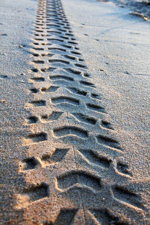 Tire tracks on the sand stock photos