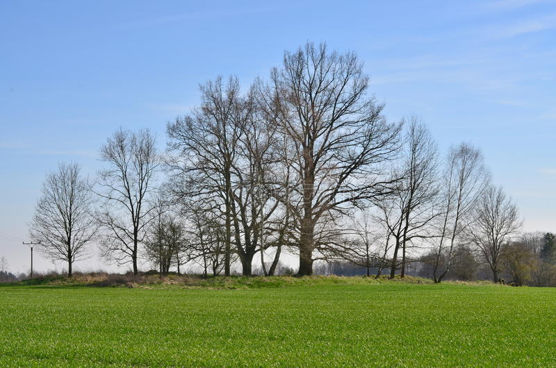 View of the spring countryside, South Bohemia stock image