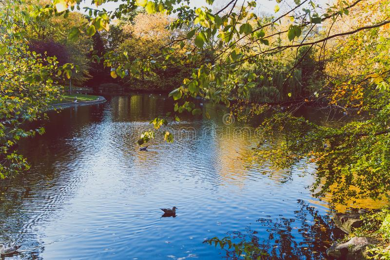 View of St Stephen`s Green park in Dublin city centre in early A royalty free stock photography