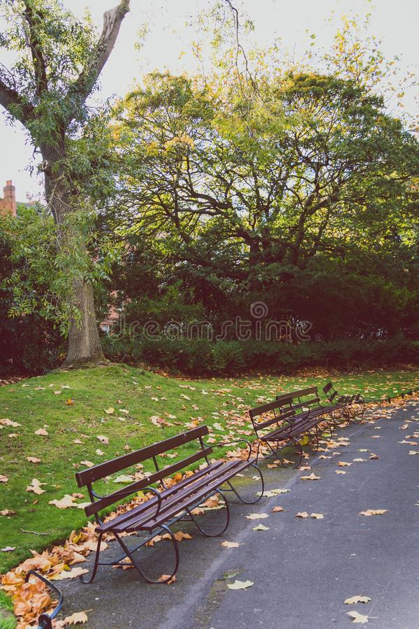 View of St Stephen`s Green park in Dublin city centre in early A stock images