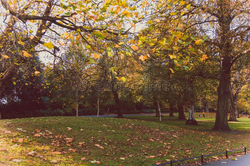View of St Stephen`s Green park in Dublin city centre in early A royalty free stock images