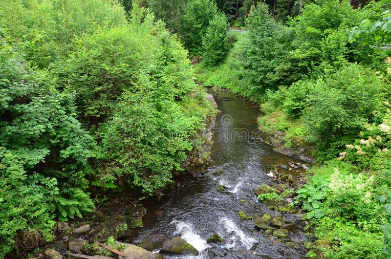 The view of a stream in the mountains. In Poland royalty free stock images
