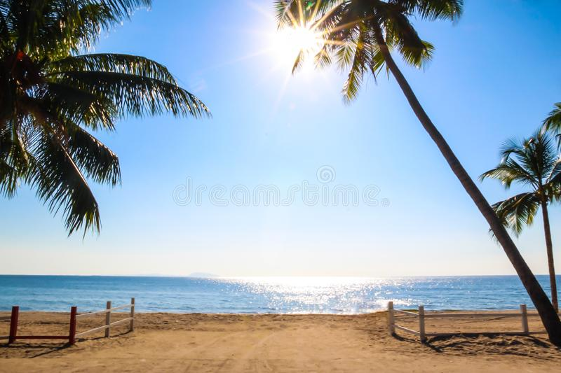 View of sunny day tropical beach with palm trees and fence stock images