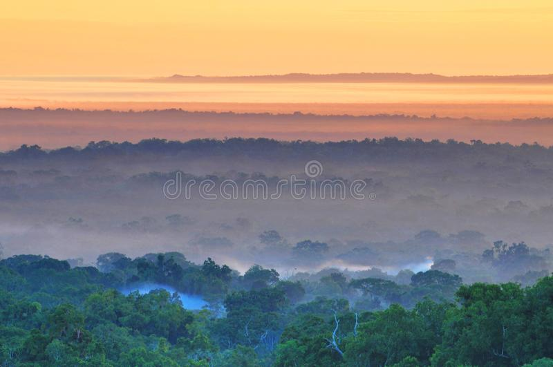 View of a sunrise above the Peten jungle with the pyramids of Tikal towering above the tree canopy in Guatemala.  royalty free stock photography