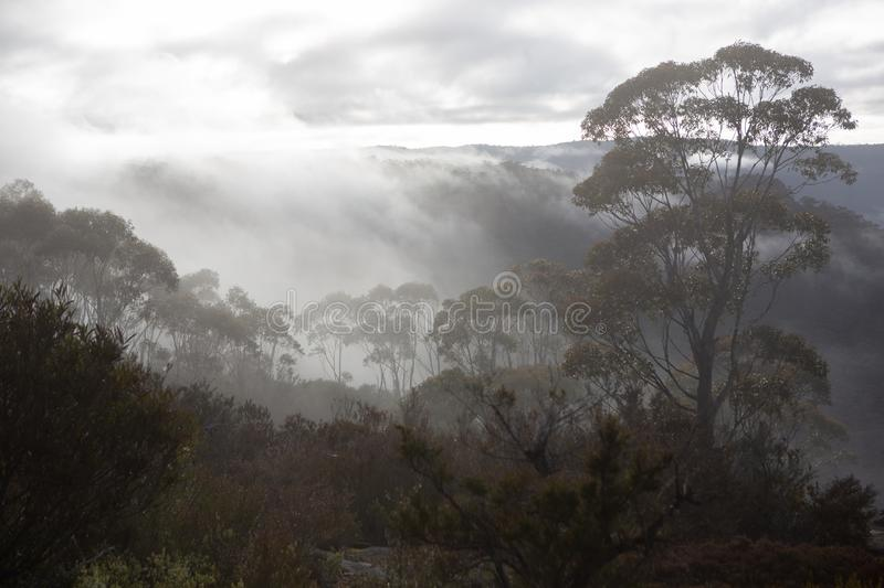 The view of surrounding mountains and fog in the valleys looking from Hassans Walls Lithgow new South Wales Australia on 31st July. 2019 royalty free stock photo