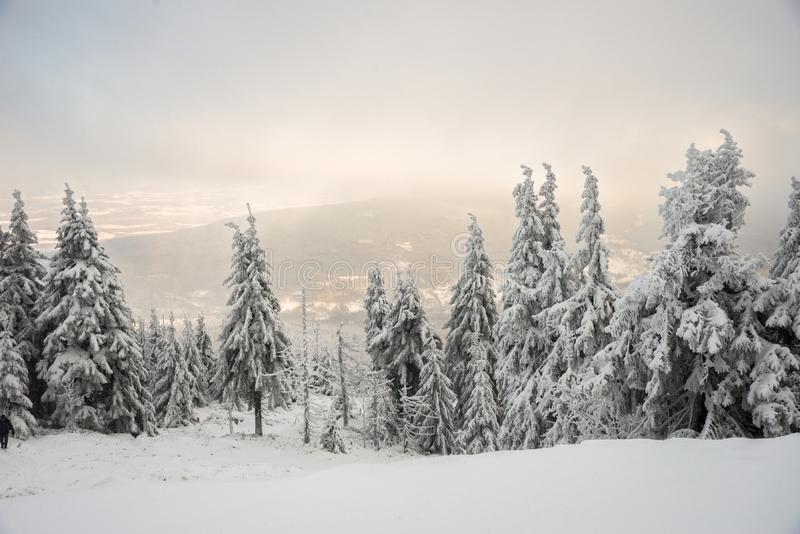 View on  Sweradow Zdroj resort in snowstorm,  Jizera Mountains, Poland. View on  Sweradow Zdroj resort in snowstorm, northern slope of Jizera Mountains, Poland stock photography