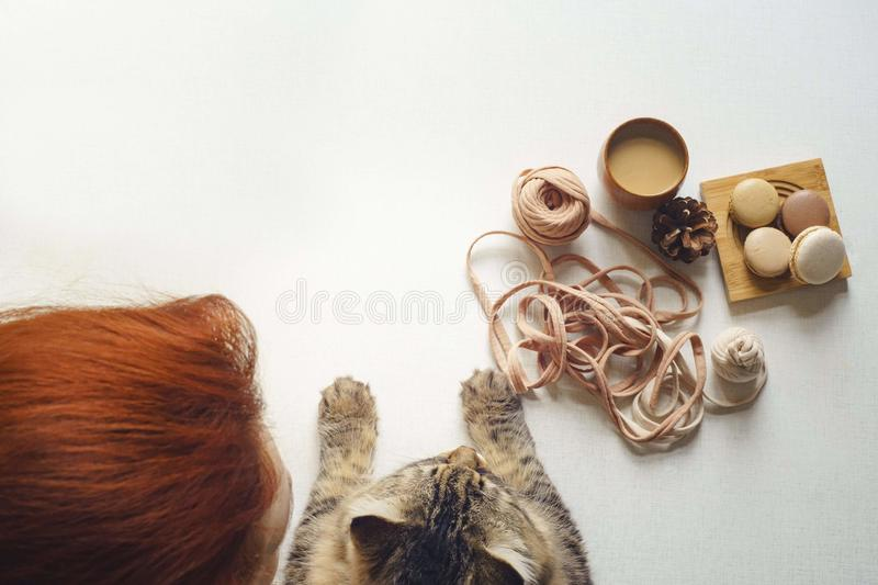 Cat and woman with red hair drink coffee stock photos