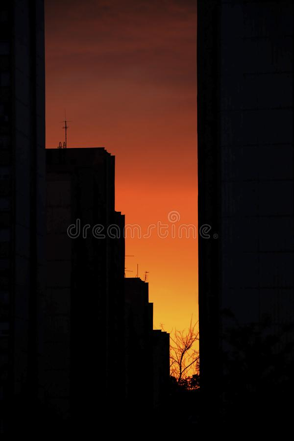 View a tall building in the residential part of Belgrade, Serbia. New Belgrade neighbourhood, blocks of council flats, in the sunset in the spring / summer royalty free stock image
