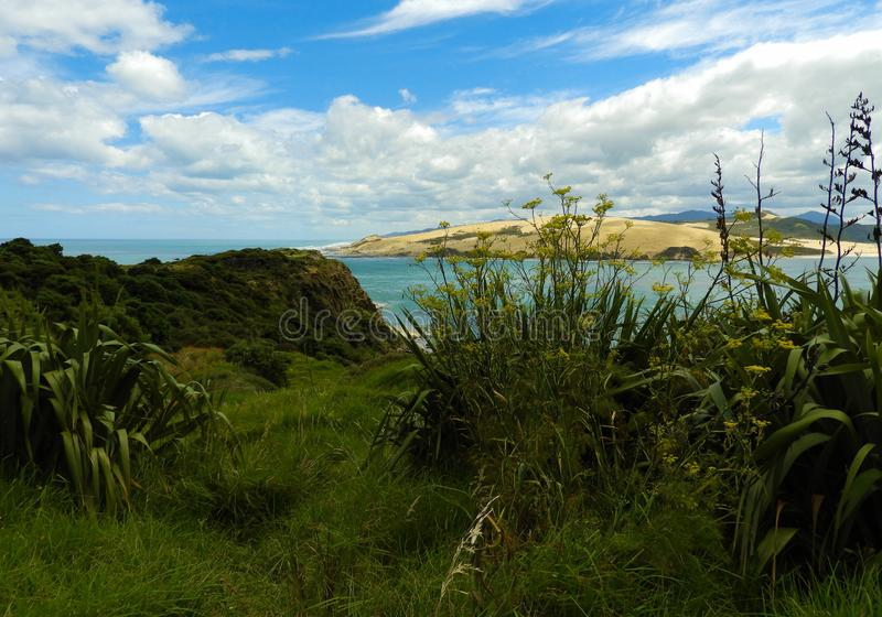 View of the Tasman Sea near Omapere, New Zealand. Tasman Sea seen from the scenic outlook at the Hokianga River near Omapere, New Zealand royalty free stock photography