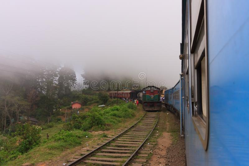 View of tea plantations from the train from Kandy to Ella stock photography