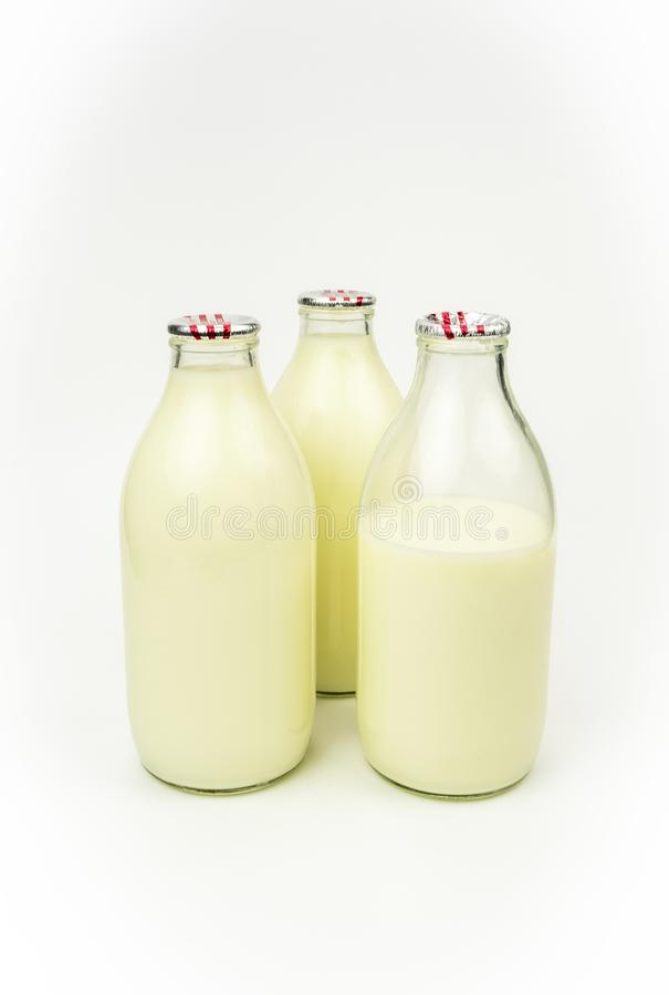 Bottled cows milk. A view of three bottles of cows milk  on a plain background stock image