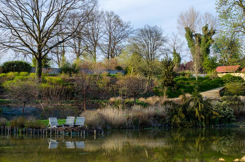 View of three old wooden chairs near pond against hills with different plants and trees in the botanical garden in Poland. stock photo