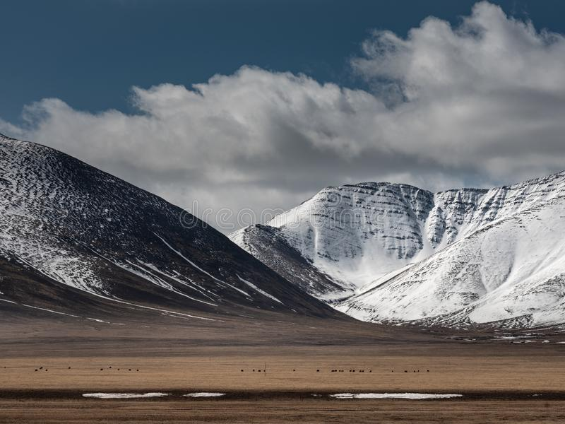 View from Tibet background royalty free stock images