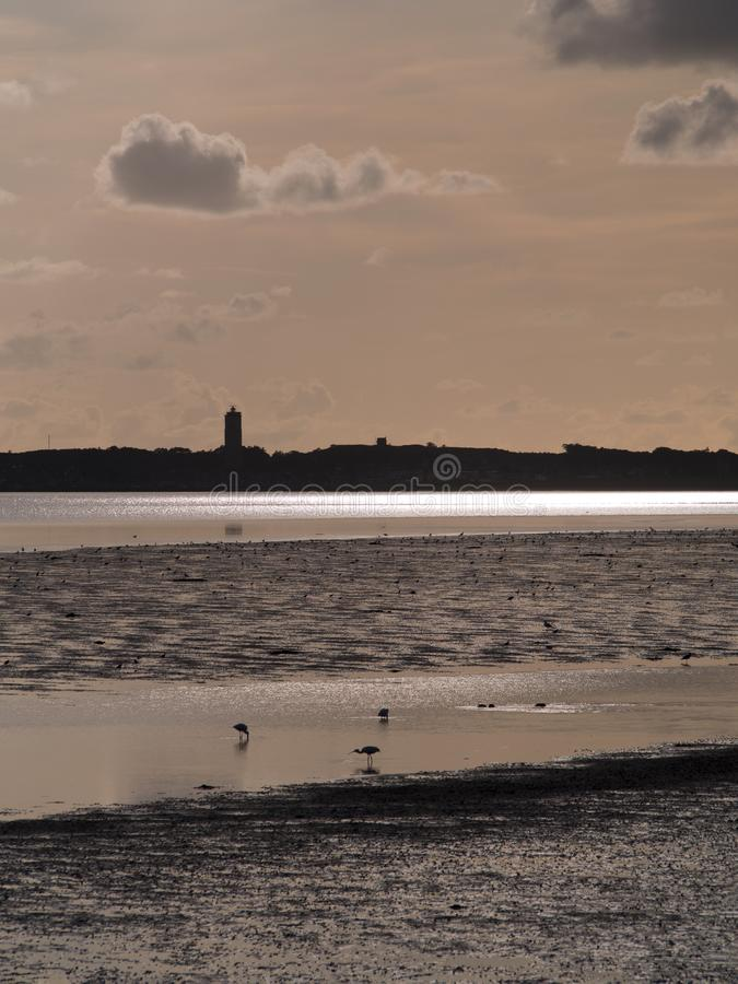 View on a tidal seascape with spoonbill birds stock photo