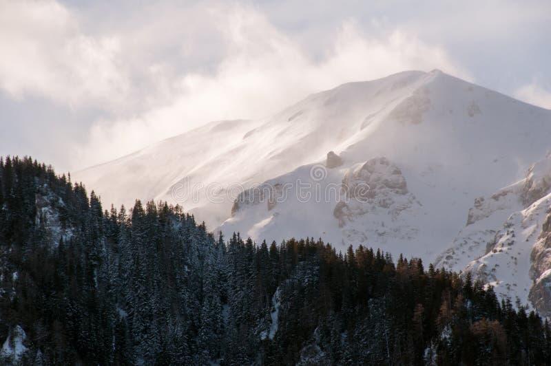 View of Tiganesti ridge royalty free stock image