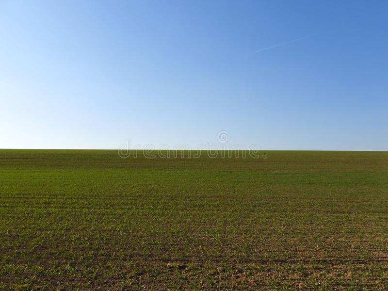 Sown field horizon royalty free stock photography