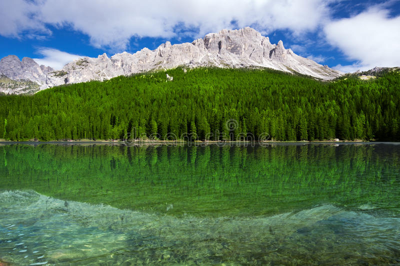 View to Lake Misurina, conifer forest and Dolomites, Italy, Euro stock image