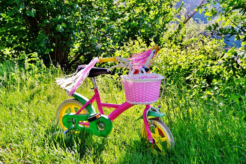 Little girl pink bicycle with basket parked in the middle of meadow. royalty free stock photography