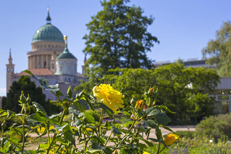 View to the Nicolas Church. View from little Island named Freundschaftsinsel to the Nicolas Church (Nikolaikirche) and the Cupola of Old Town Hall (1753-1755) at stock image