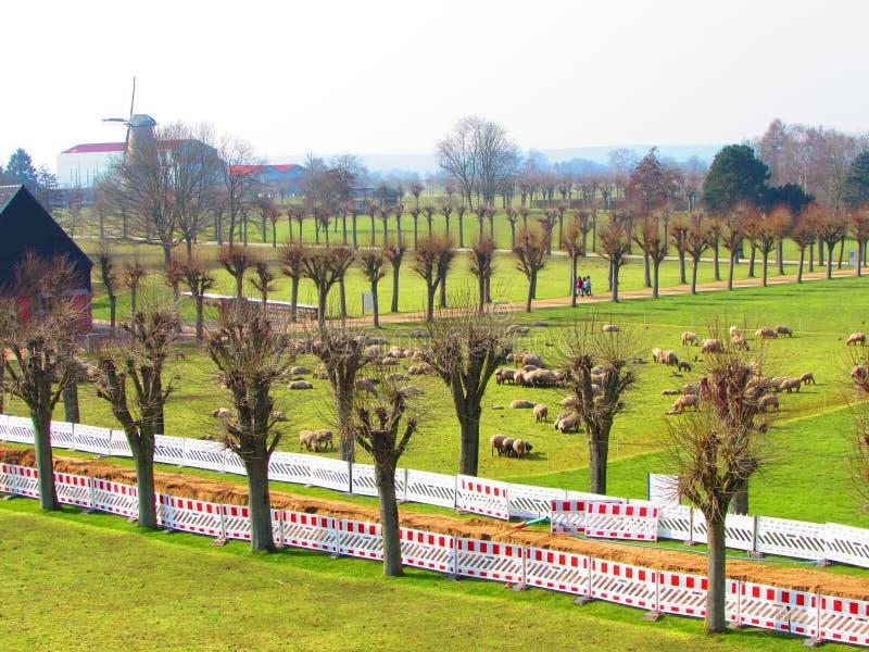 View to Römer Museum stock photo