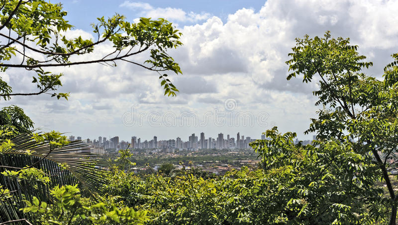 A view to Recife stock photo