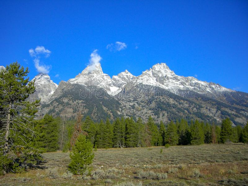 View to the rocky mountains with a forest in front. In summer royalty free stock images