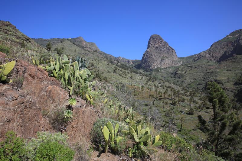 View to Roque de Agando and Valley of Benchijigua - Garajonay National Park on Canary Islands. La Gomera royalty free stock images