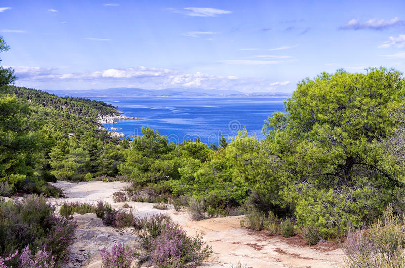 View to the sea from top of a hill, in Sithonia, Greece stock images