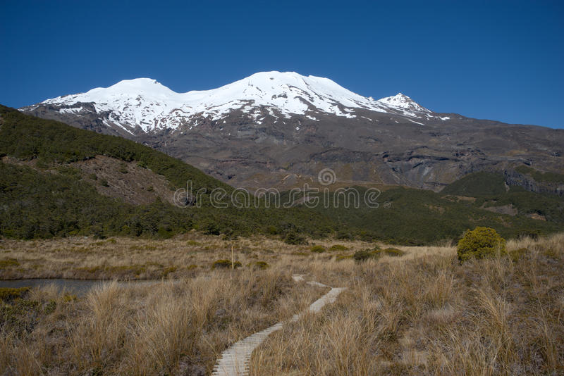 View to the snow covered volcano Ruapehu stock image