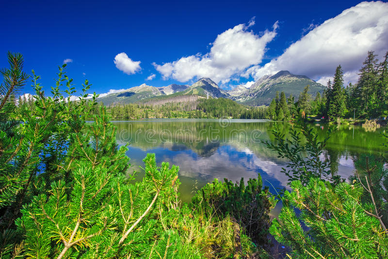 View to Strbske pleso in High Tatras during summer, Slovakia royalty free stock image