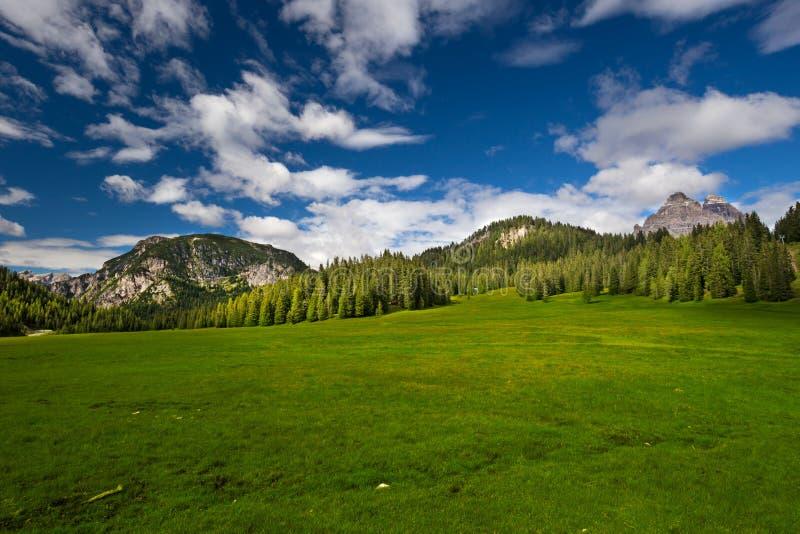 View to he Tre Cime di Lavaredo in Dolomites, Italy, Europe stock photo