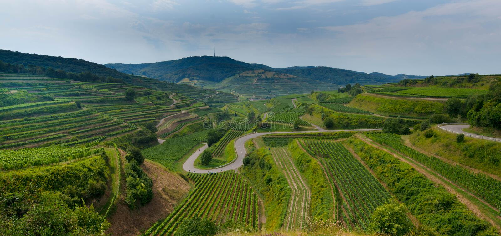 Kaiserstuhl area in Germany. View to the valley of Oberbergen in the Kaiserstuhl area in Germany royalty free stock photo