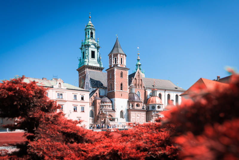 View to Wawel Cathedral in Krakow, Poland. royalty free stock image