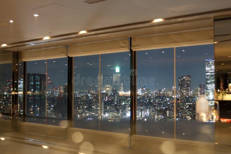 View on Tokyo cityscape royalty free stock photos