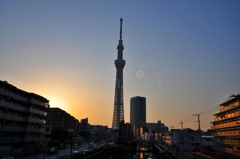 View of the Tokyo SkyTree during sundown royalty free stock photos