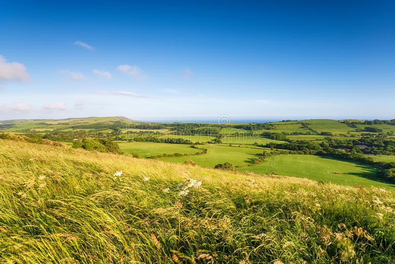 The view from the top of Grange Hill. Near Steeple in the Dorset countryside, looking out to the coast at Kimmeridge royalty free stock image