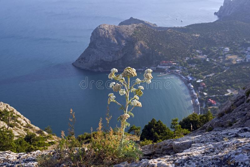 Areal view on a small resort town on the Black Sea coast of Crimea. View from the top of Sokol mountain to the coastal resort town of Novy Svet, Crimea royalty free stock image