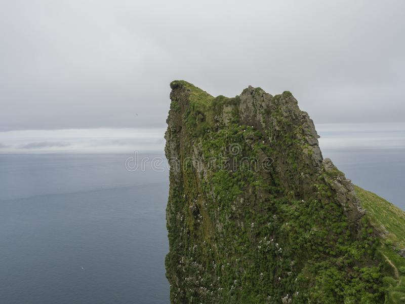 View on top of steep king and queen Hornbjarg bird cliff in west. Fjords, remote nature reserve Hornstrandir in Iceland, ocean and gray sky royalty free stock photos