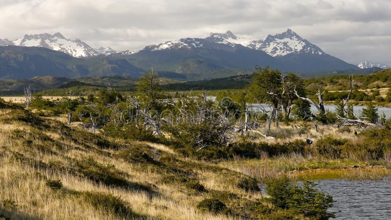 View of the Torres del Paine from Rio Serrano stock photos