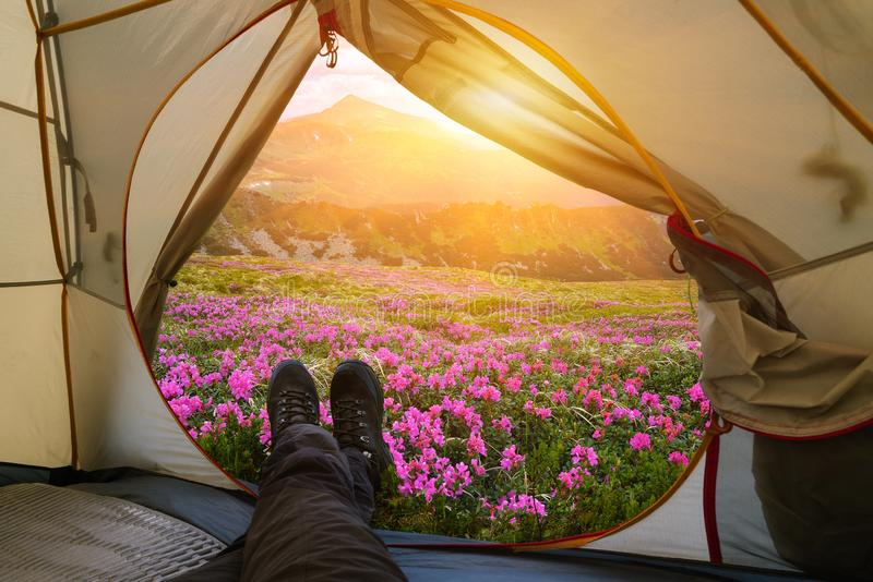 Relaxing with a tent in a summer mountain camp stock photos