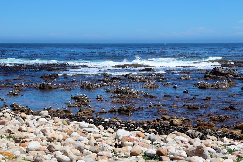 View towards the Altlantic from the Cape Peninsula royalty free stock photo