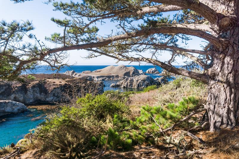 View towards Bird`s Island in Point Lobos State Natural Reserve, Carmel-by-the-Sea, Monterey Peninsula, California stock photos
