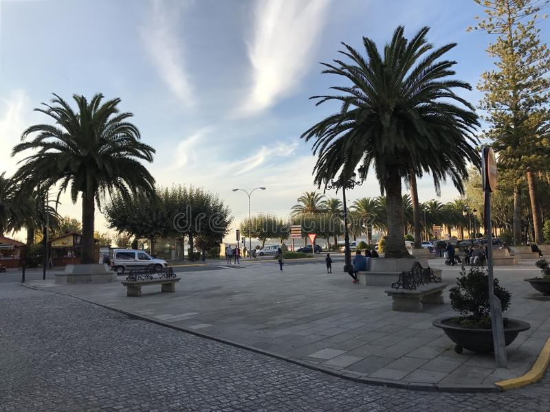 View of the town square with palm trees bushes and benches at Cambados Galicia Spain stock image