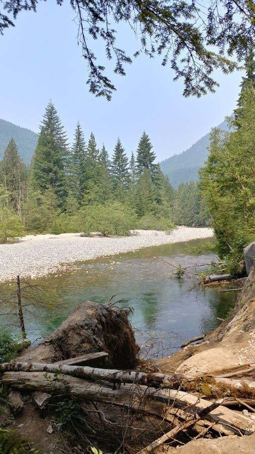 Golden Ears Provincial Park stock image