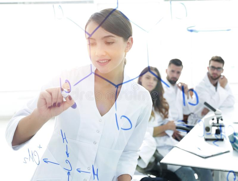 View through the transparent Board. female scientist makes a rep. Ort to colleagues. concept of research royalty free stock images