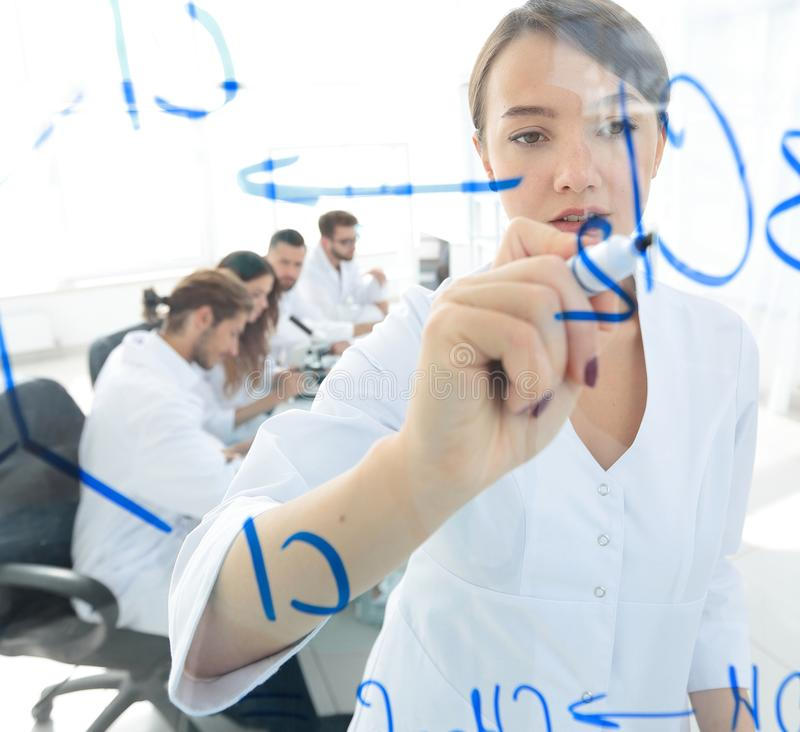View through the transparent Board. female scientist makes a report to colleagues. Concept of research royalty free stock images