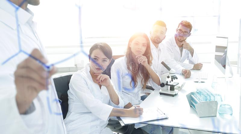 View through the transparent Board. a scientist makes a report. royalty free stock images